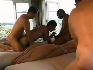Gay Cubs Anal Probed