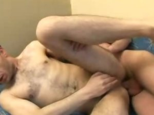 Hairy Gay Cub Gets Ass Fucked