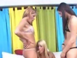 Hot Shemale Trio