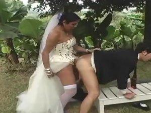 vids Free shemale wedding